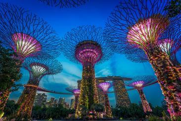 【新加坡】濱海灣花園 花穹霧林入場券--電子票