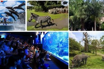 【曼谷】野生動物園