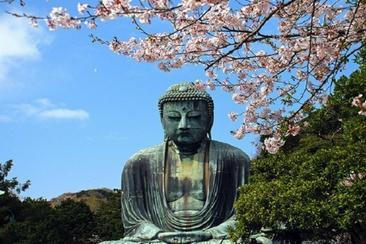 春季特價優惠!鐮倉,江之島,台場 一日遊
