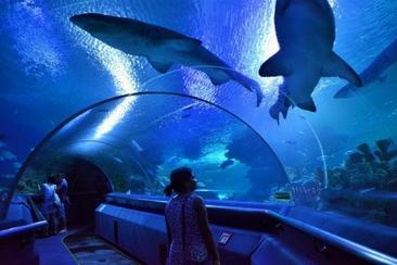 【馬來西亞】吉隆坡Aquaria KLCC水族館門票(電子票)