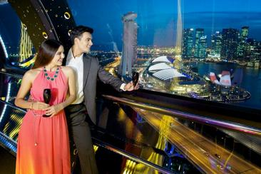 【新加坡】摩天觀景輪 Singapore Flyer