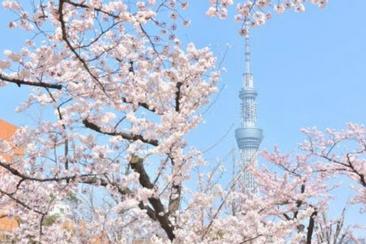 四月一日後適用 東京晴空塔門票(350或450m展望台) - 免排隊快速通關