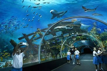 【新加坡】名勝世界 S.E.A 海洋館--電子票