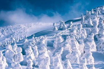 【東日本鐵道假期】山形地區,搭乘NIGHT CRUISER號遊覽樹冰夢幻迴廊