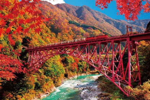 【楓聲響起】黑部峽谷宇奈月立山上高地飛驒白川鄉伏見大阪5日