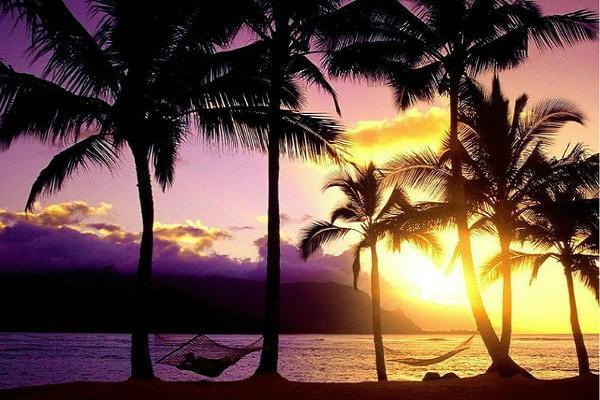 【精彩海南】心旅程新享受、海南島5日(升等海口香格里拉酒店)