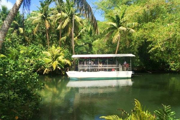 關島秘境之旅5日(叢林探險遊船河)