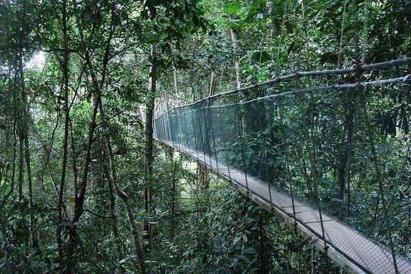 深情沙巴 |神山自然遺產、馬穆迪島5日