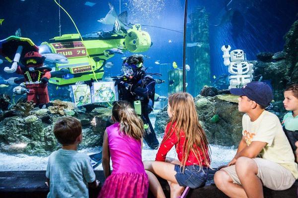 新加坡旅遊 童心玩新 樂高水陸雙樂園+水族館+環影+夜訪螢火蟲 5日