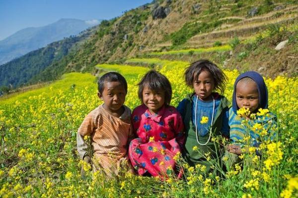 【賺很大】尼泊爾雙飛、三皇宮廣場、費娃湖、奇旺叢林探險、日出魚尾峰9日