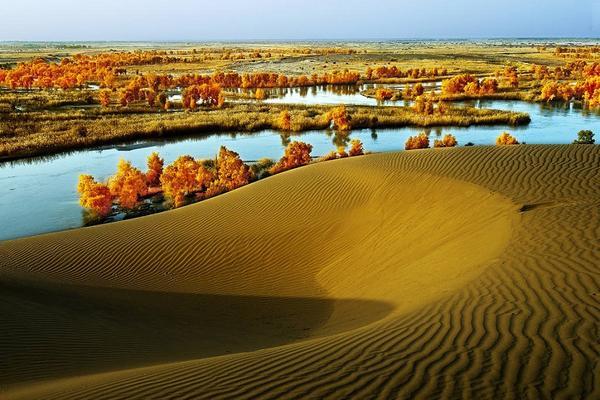 大美南疆、沙漠胡楊、麥蓋提刀朗舞、卡拉庫里湖9天