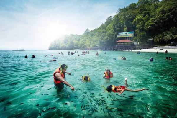 夏日浪花~芭椰島、東方村纜車、蟲鳴大地、The Top彩虹天空步道5日