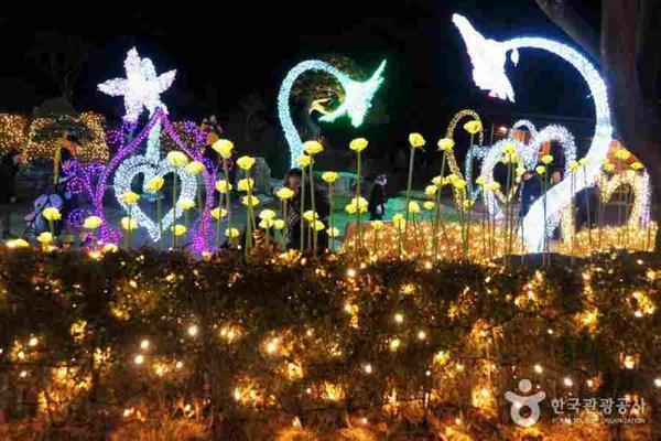 【二晚國際五星+網卡】韓冬星光~酒莊、滑雪、愛寶、晨靜樹木園、厨師秀5日