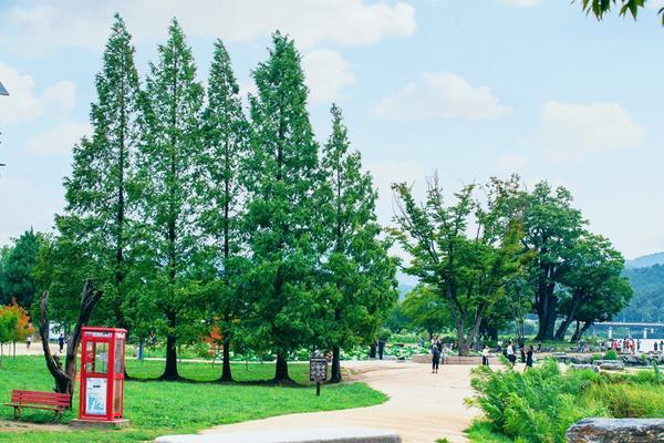 【不進人蔘保肝】升等2晚市區~韓國愛寶、晨靜樹木園、兩水頭、童話彩繪村、龍蝦海鮮鍋美食5日