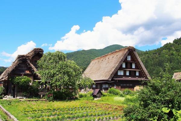 【立山綠森林】宇奈月、峽谷鐵道、祕境上高地、童話合掌村、溫泉東京5日