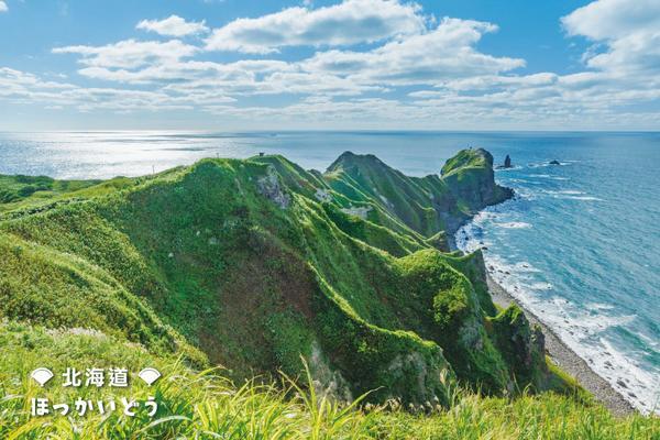 【北海道仲夏富良野】熱汽球、積丹展望船、小樽海洋公園、三大螃蟹5日(BR116/115)