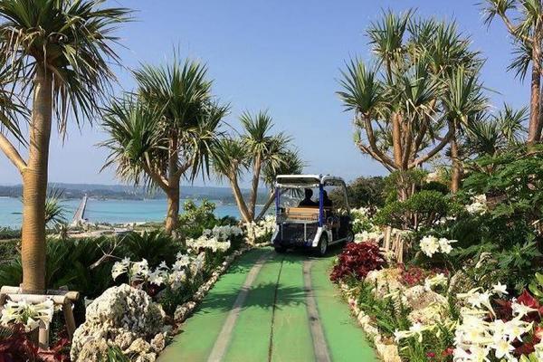 【花漾沖繩優質】BIOS山中森林、貓島奧武島、古宇利海洋塔、海洋博4日