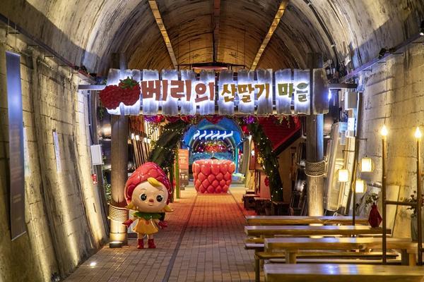 【不進人蔘、保肝】釜山草莓酒莊、EWORLD樂園、汗蒸幕、鯨魚生態館5日【7C早晚】