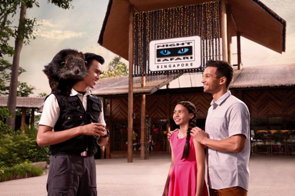 新加坡旅遊 魅力無限 夜動、樂高、環球、蠟染、泰迪熊館、螢火蟲 5日