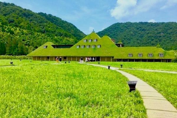 【綠意。森呼吸】古今京都.悠遊美山合掌村.MIHO桃花源5日