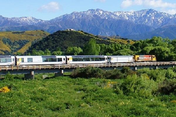 大自然地理教室~紐西蘭南北島 高山火車 冰河 峽灣 地熱 螢火蟲十日