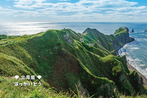 【北海道親子玩夏】函館夜景、海洋尼克斯熊牧場、積丹島水中展望船5日(BR138/137)