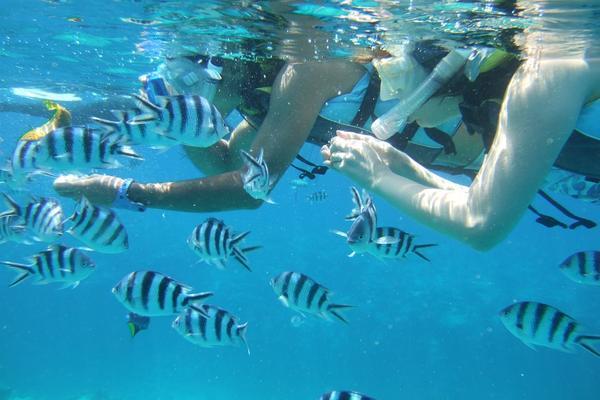 【沖繩樂一夏】青之洞窟浮潛、海洋博水族館、玉泉洞、系滿市場、瀨長島四日