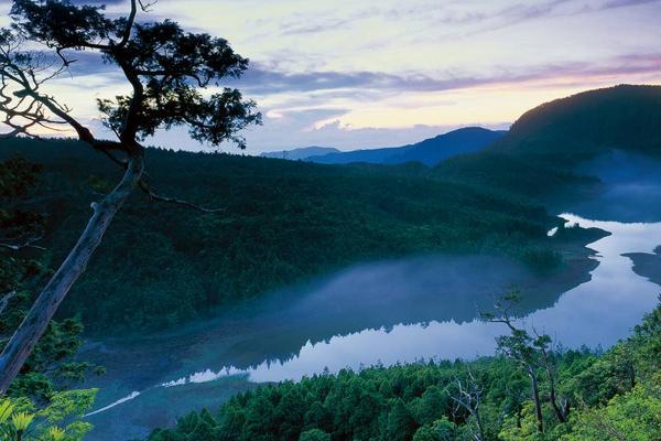 【宜蘭】太平山國家森林遊樂區門票(平假日均可使用)