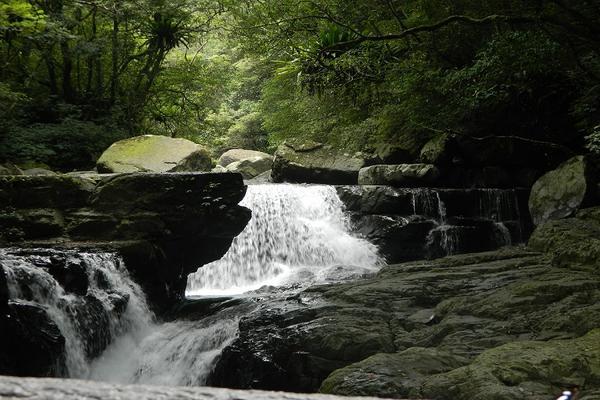 【新北】滿月圓國家森林遊樂區門票(平假日均可使用)