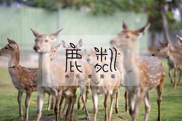 【電子票券】屏東小琉球鹿粼梅花鹿園區門票