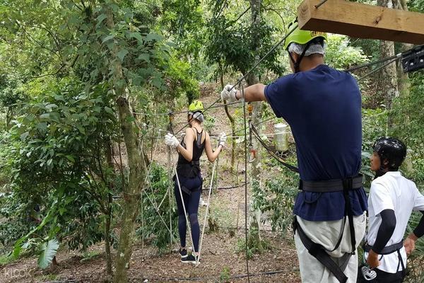 【花蓮】野猴子探險森林 - 樹頂探險體驗