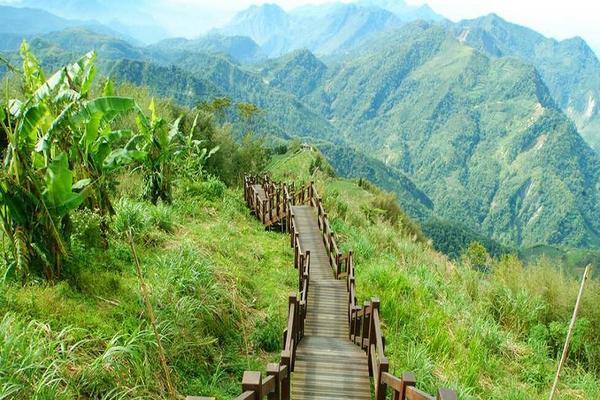 【阿里山】台灣好行阿里山線來回車票+阿里山國家森林遊樂區門票+奮起湖雅湖老阿嬤の鐵路便當