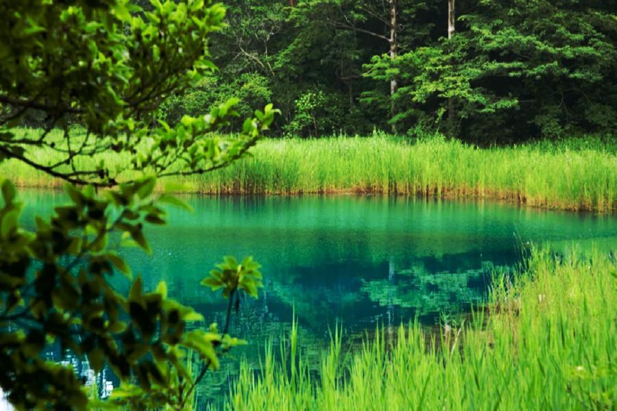 【星野磐梯星空】銀山溫泉小鎮、品嚐米澤牛、松島船說4日(仙台仙台)