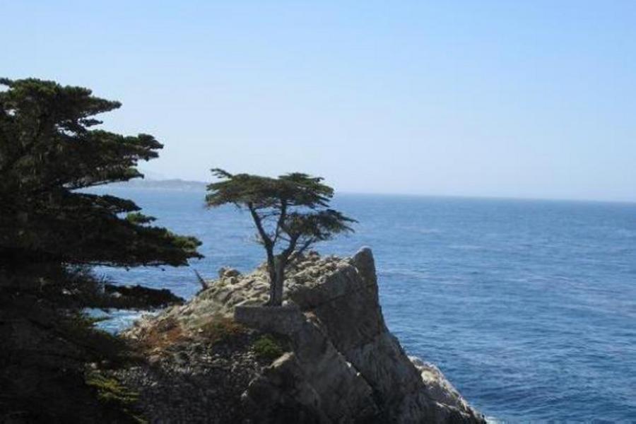 歡樂美西17哩海岸 港灣遊船 大峽谷天空步道 雙樂園九日