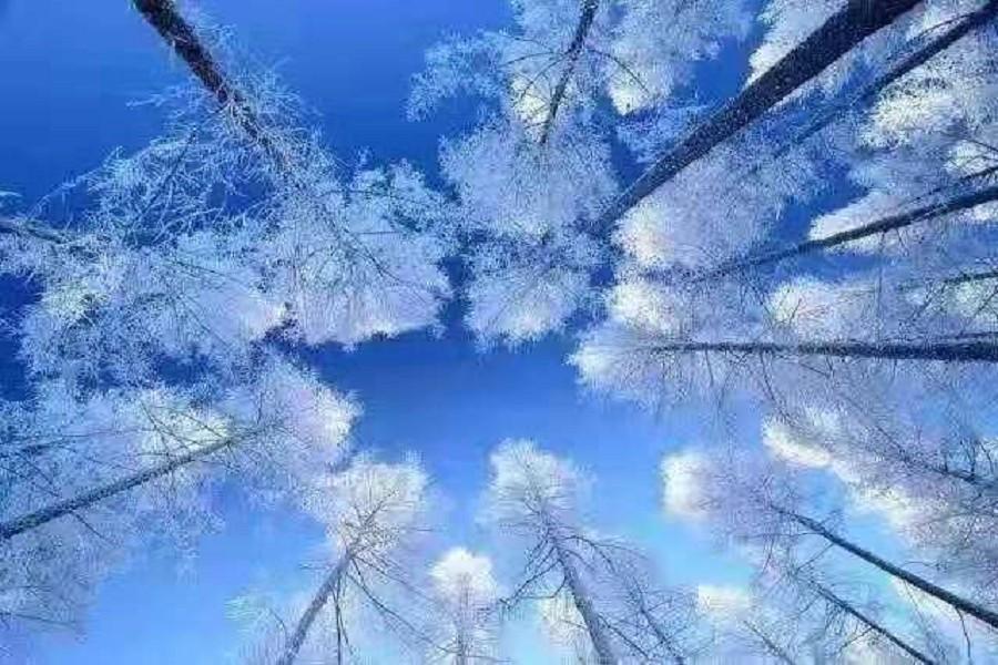 冬季牧歌、冰雪禾木、童話喀纳斯、玩雪北疆9天