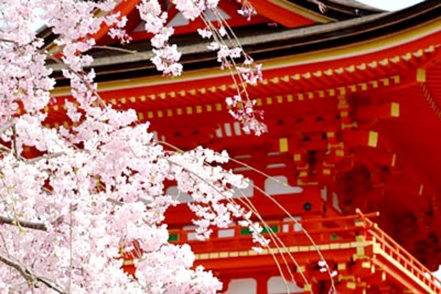 《超值春櫻繽紛》幸福關西●浪漫花舞~京阪神春の物語‧環球影城夢5日