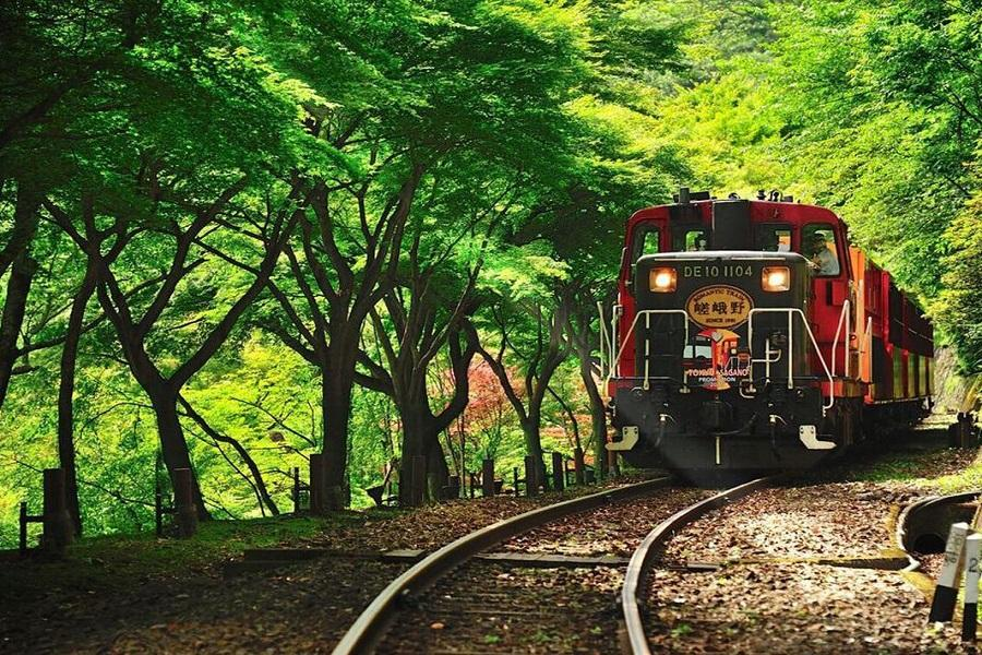 【輕遊關西】日本京都環球小小兵哈利大阪散策5日