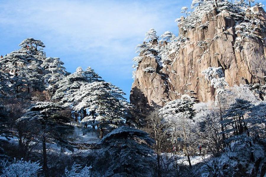 黃山賞雪景、泡溫泉、走訪宏村五日 【無購物.山上乙晚】