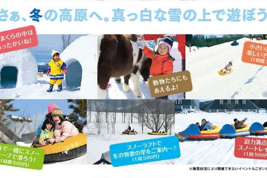 雪遊名古屋、仙境月兔、合掌村溫泉、江戶街道泉5日