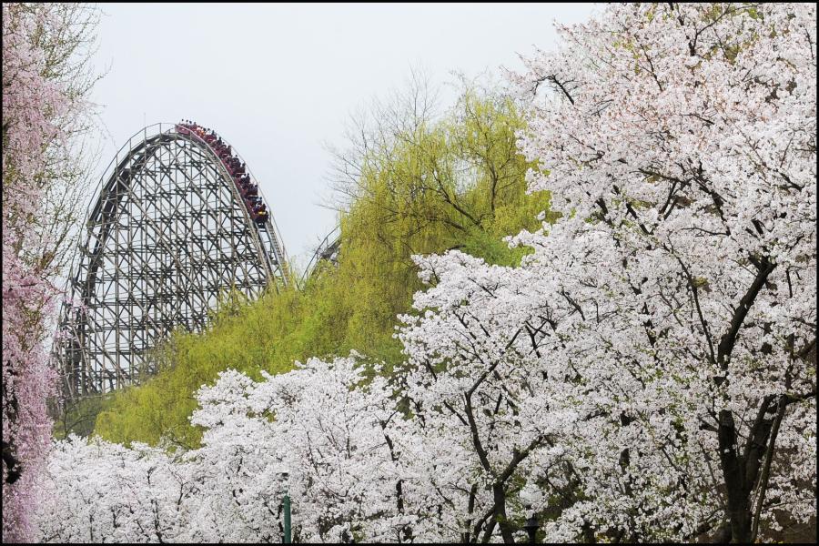 【升等市區飯店】奔跑吧!韓國~跑跑人體驗館、冰雪樂園、愛寶、塗鴉秀5日