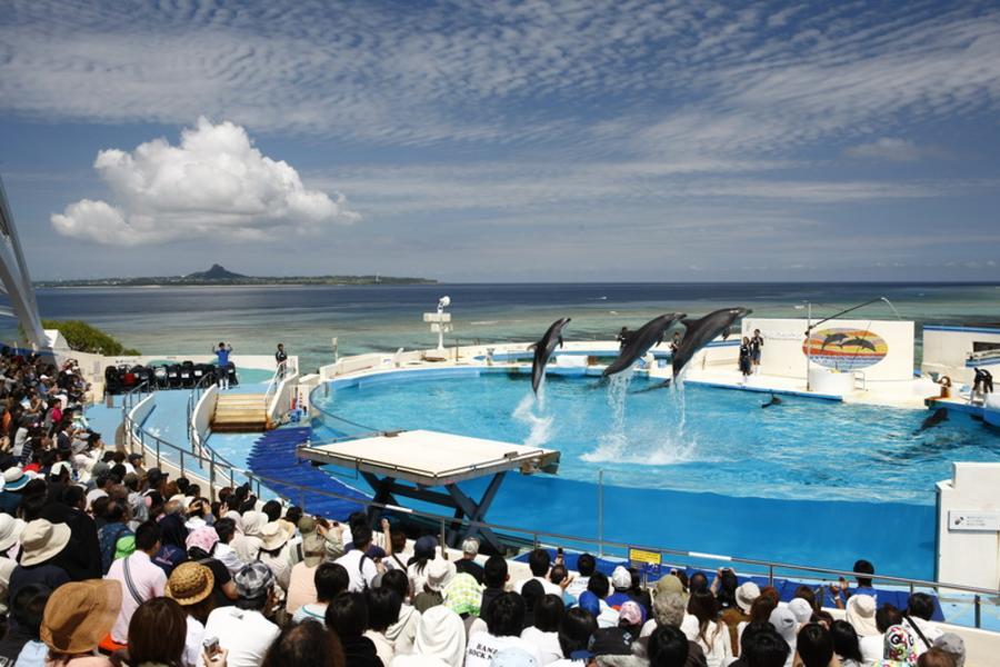 春節喜年來~★歡喜遊琉球★ 沖繩珍湛超質渡假趣五日遊