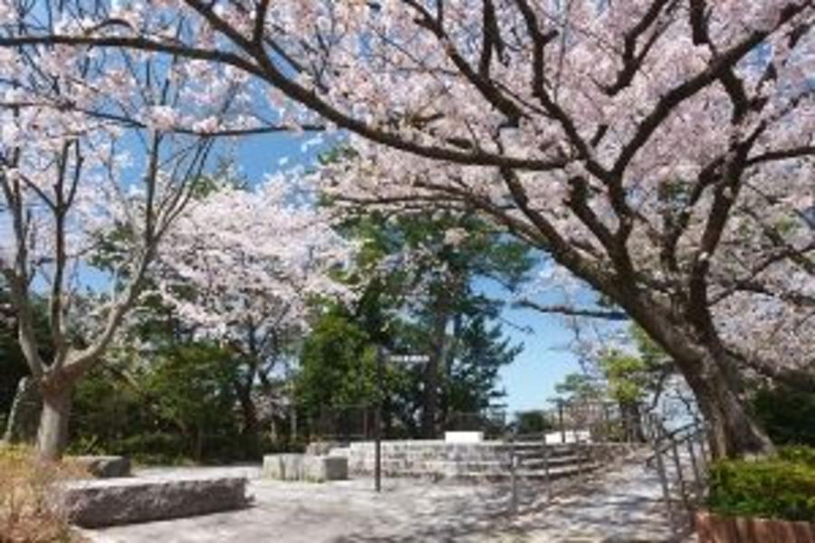 花現嘻遊趣》春櫻鐵道★湯布院之森‧櫻花庭園‧古街名城溫泉5日