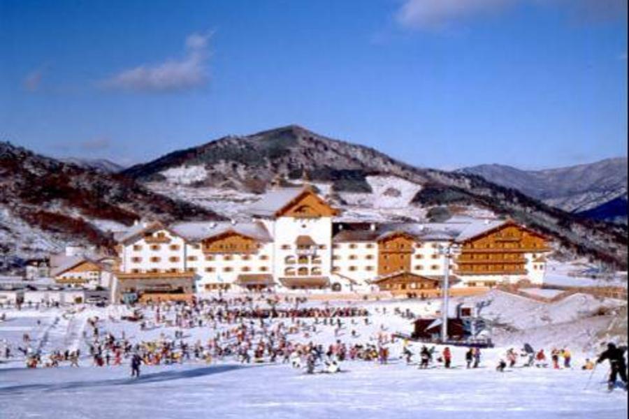 《渡假村一晚+市區五星一晚》韓星冬雪玩很大★滑雪、MBC WORLD、聖托里尼咖啡、南怡島、水上計程車、明洞購物樂 (泰航)