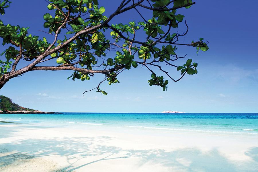 沙巴逍遙遊~海洋公園浮潛+獨木舟、生態雨林長鼻猴+螢河遊、黑胡椒螃蟹海