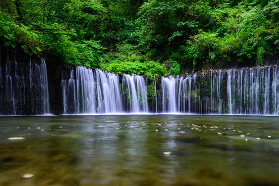 【愛上蛋黃哥】輕井澤燒肉、OUTLET、彩虹樂園、東京輕旅行5日