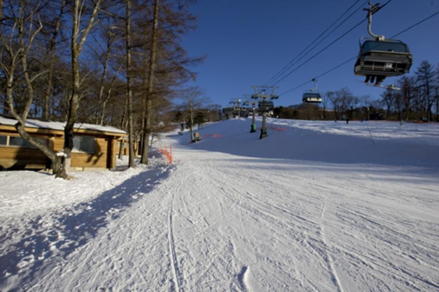 >輕鬆滑雪趣-輕井澤滑雪+東京團體自由行5日
