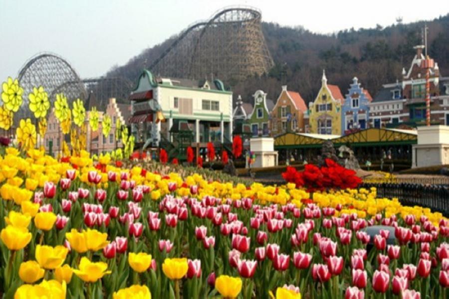 享樂韓國~38度線、愛寶樂園、冰雪樂園、水原華城、明洞、塗鴉秀5日