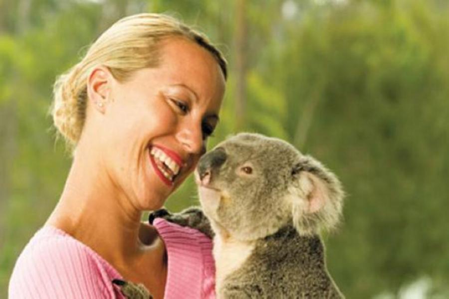 《送無尾熊抱抱合照》漫遊澳洲雪梨黃金雙城七日~藍山國家公園纜車、歌劇院、港灣遊船、天堂鄉農莊、思洛美酒莊SB