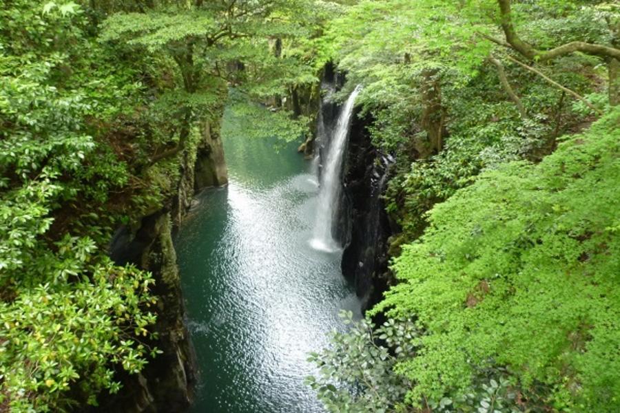 【日南陽光南九州】高千穗峽、莫埃人像、飫肥城散策、磯庭園、指宿砂浴6日