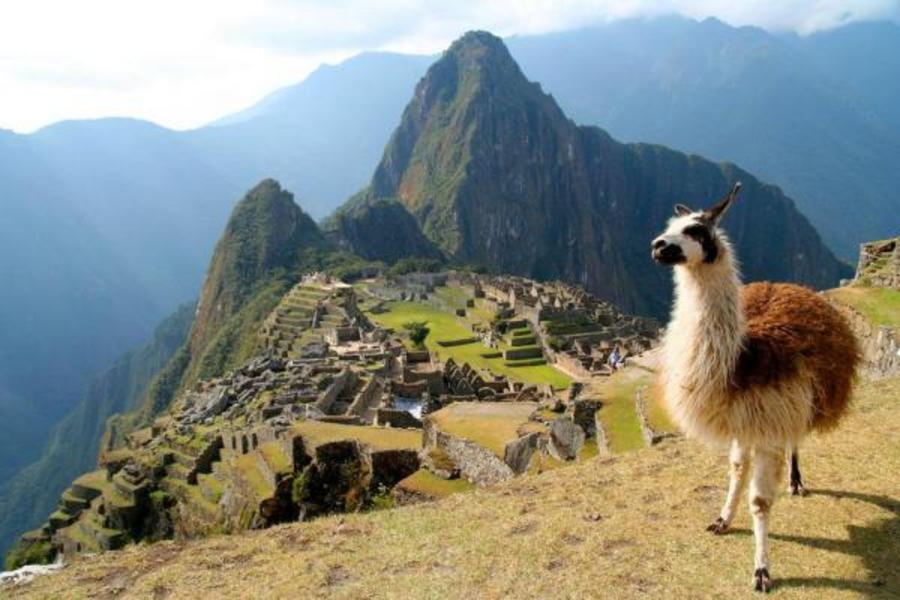 【和平號99回】阿爾巴尼亞、摩洛哥、巴拿馬、祕魯、環遊世界108日